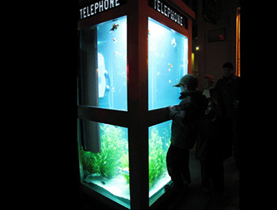phone-booth-aquarium