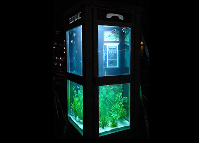 phone-booth-aquarium1