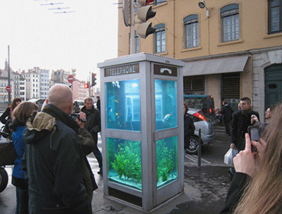 phone-booth-aquarium2