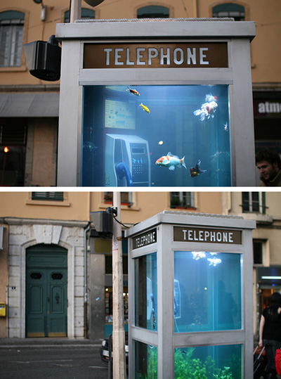 phone-booth-aquarium3